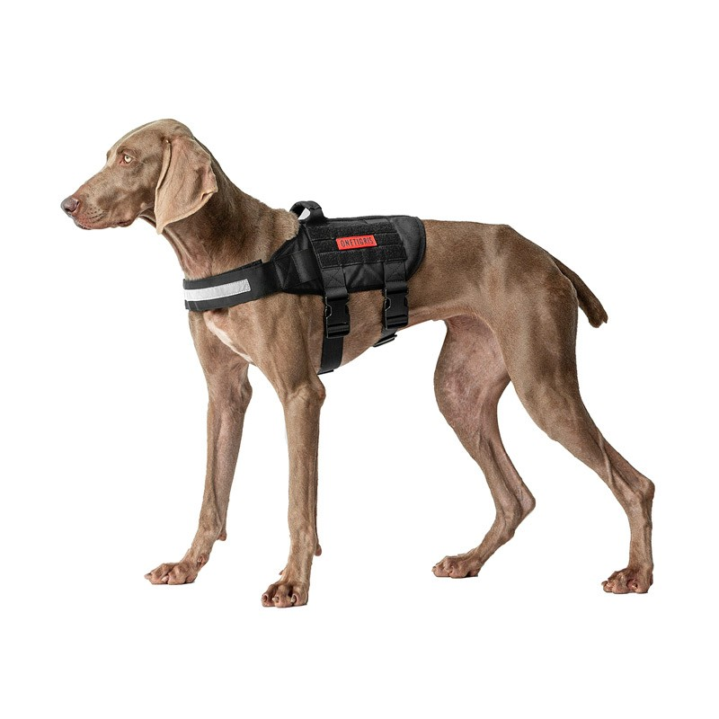 BLACK RHINO K9 Harness