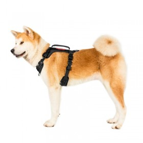 [US ONLY] FIGHTER BEETLE Dog Harness