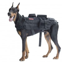 POWER TRAIN Dog Harness