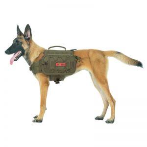 MAMMOTH Dog Pack