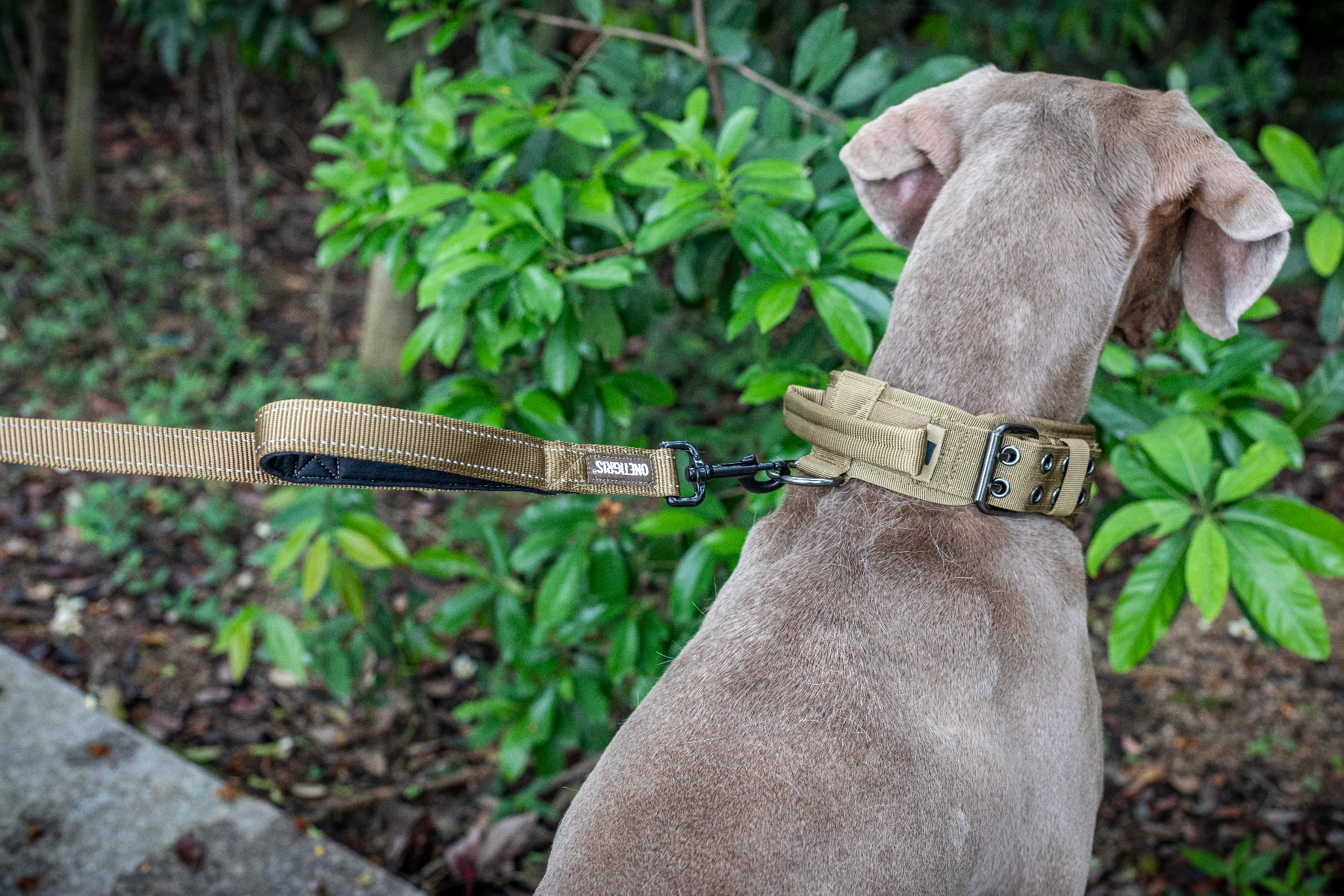 OneTigris Dog Leash 16 multilayered nylon webbing construction Padded top handle and front grab handle Light reflective stitches