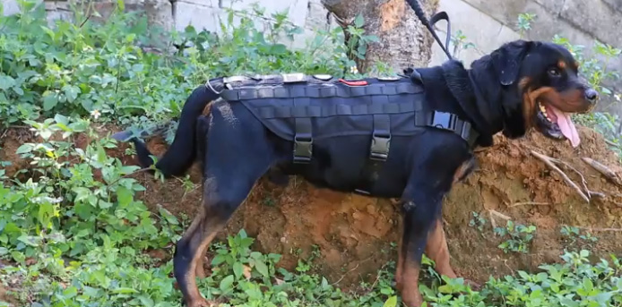 Onetigris Tactical Dog Vest Tactical Molle K9 Harness For